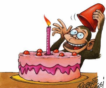 birthday_monkey