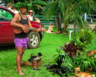 hawaii ukelele