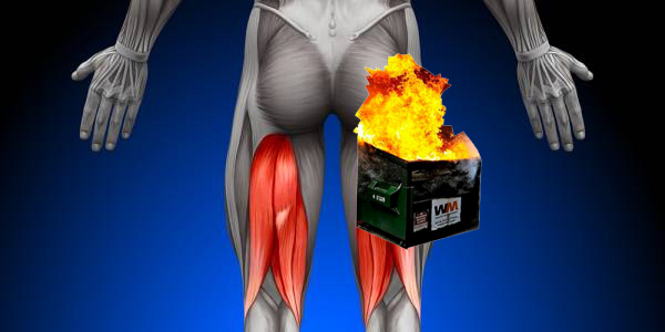 The Dumpster fire of my hamstring.